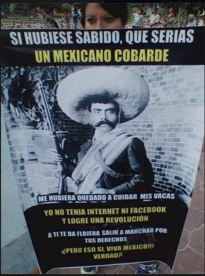 Zapata and the internet