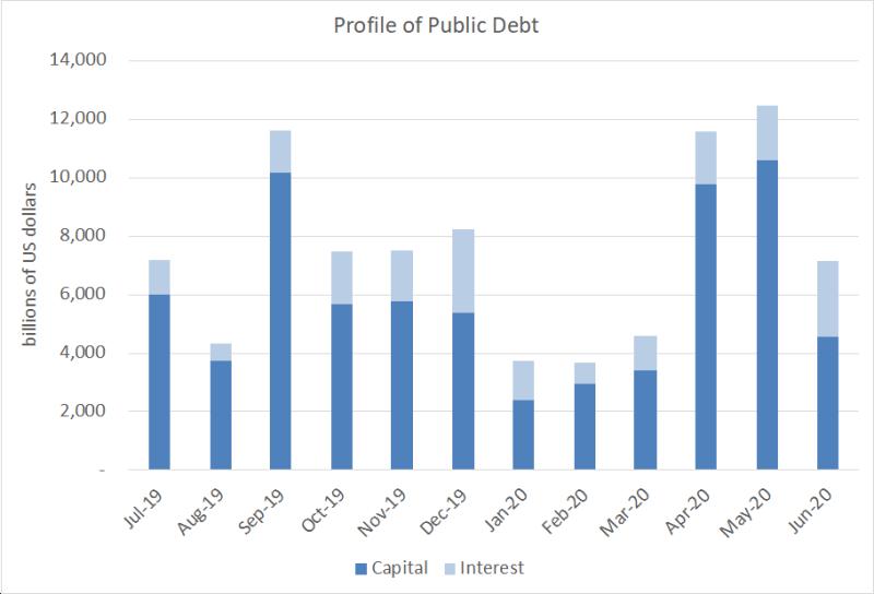 Argentine public debt payment profile  2019